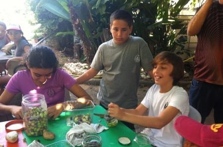 Making Olives
